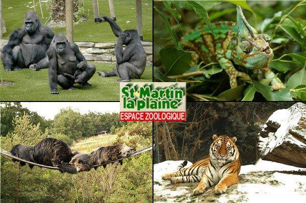 Espace Zoologique - St Martin la Plaine