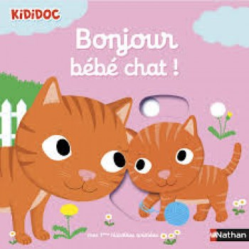 CHATS, COLLECTION KIDIDOC Éditions Nathan